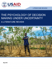 The Psychology of Decision-Making Under Uncertainty: A Literature Review Photo