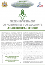 Green Investment Opportunities for Malawi's Agricultural Sector
