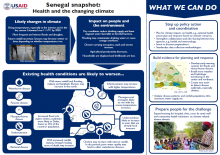 Senegal Health snapshot