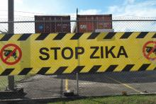 Stop Zika Bridgetown Photo