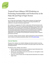 Tropical Forest Alliance 2020 Workshop on Promoting Sustainability and Productivity in the Palm Oil and Pulp & Paper Sectors Summary Report Thumbnail