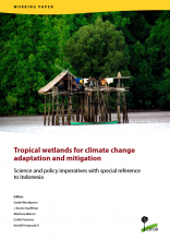 Tropical Wetlands for Climate Change Adaptation and Mitigation: Science and Policy Imperatives with Special Reference to Indonesia