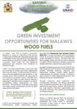 Green Investment Opportunities for Malwai's Wood Fuels