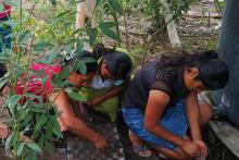 Women agriculture Guatemala