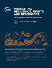 Promoting Resilience, Rights and Resources: Gender-responsive adaptation across sectors