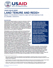 Land Tenure and REDD+