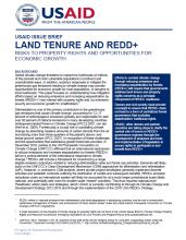 Land Tenure and REDD+