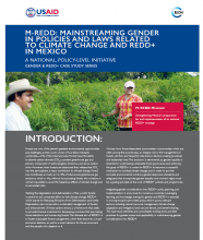 M-REDD: Mainstreaming Gender in Policies and Laws Related to Climate Change and REDD+ in Mexico