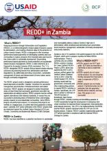REDD+ in Zambia