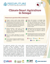 Climate Smart Agriculture in Senegal
