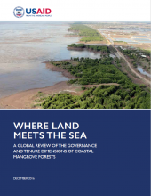 Where Land Meets the Sea: A Global Review of the Governance and Tenure Dimensions of Coastal Mangrove Forests