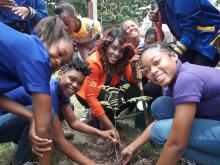 A group of students plants a tree and smiles at the camera.