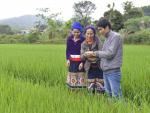 Rice farmers in one of the poorest districts in Vietnam experiment with new climate-smart rice strains.