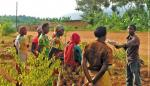 Female farmers participate in a training in Rwanda