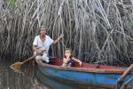 Conserving mangrove forests in Guatemala