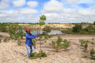 A man plants a young tree in an arid zone with a quarry lake behind him.